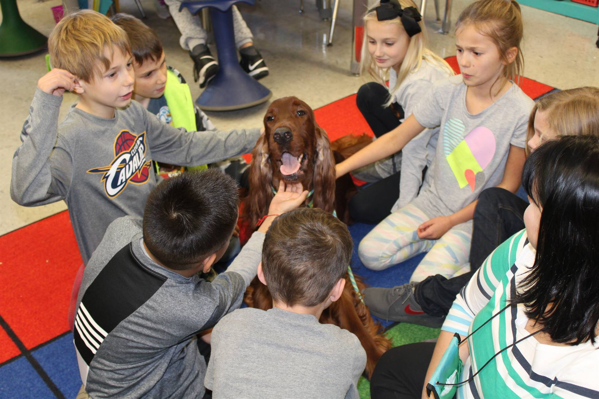 "Therapy Dog ""Dugan"" Helps 3rd Grade Read"