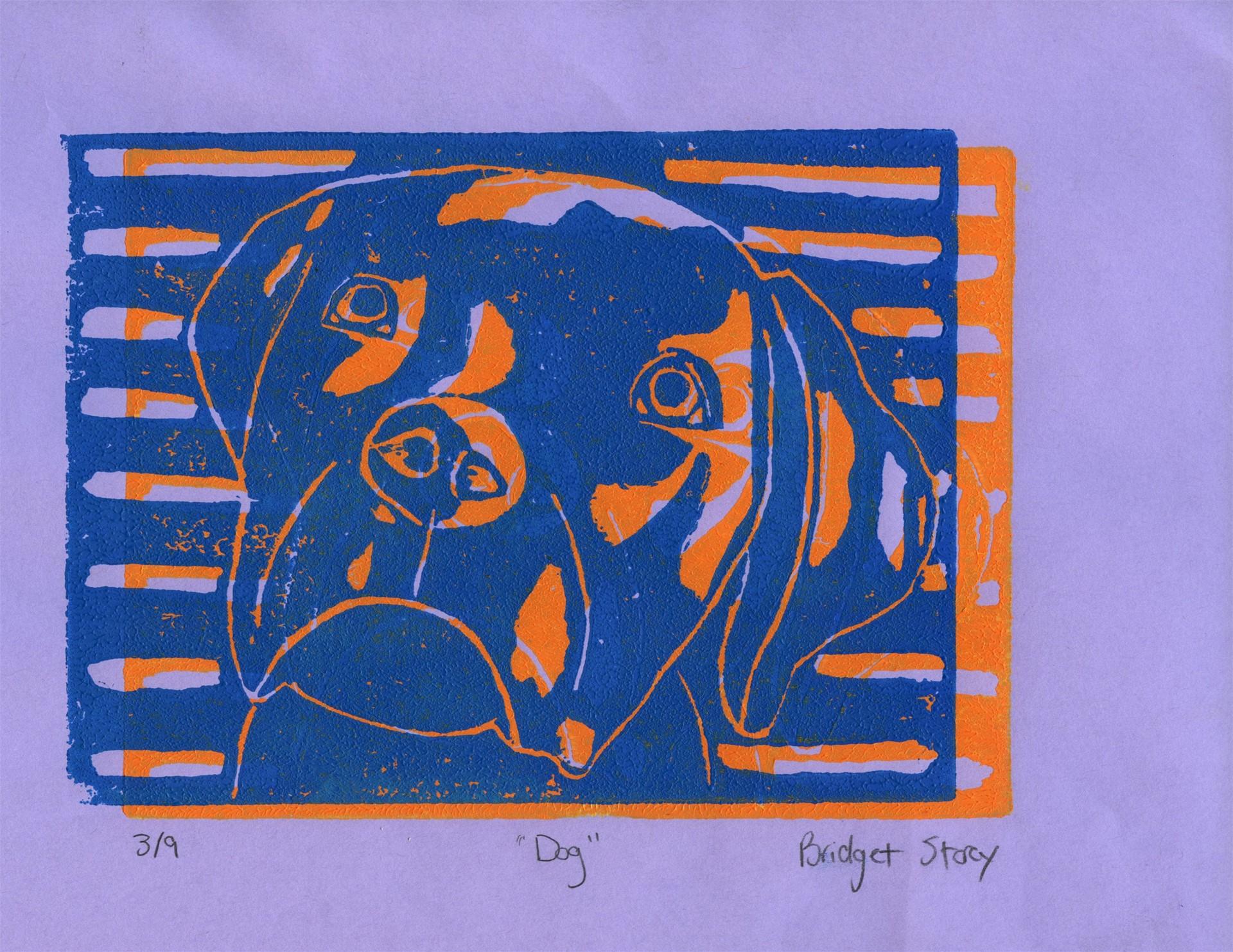Bridget Storey Grade 9