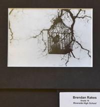 Brendan Rakes
